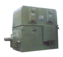广水Y系列大型高压三相异步电动机