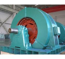 天水YR系列大型三相异步电动机维修